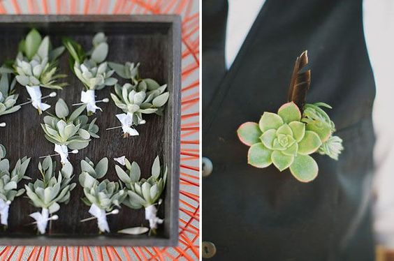 DIY succulent bouts for the groom