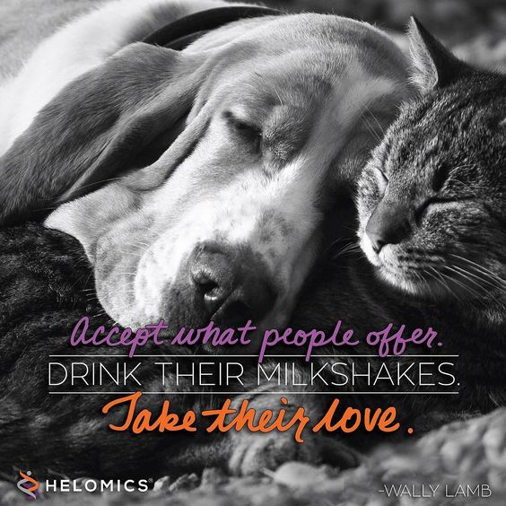 """""""Accept what people offer. Drink their milkshakes. Take their love."""" -Willy Lamb #quotes #love #CancerIsPersonal"""