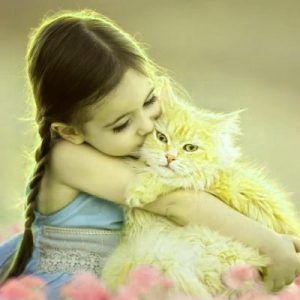 Dp For Cute Girl Iamges Hd Download Animals Cute Animals Cats