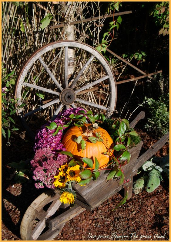 Fall decoration in our garden! www.facebook.com/DerGruneDaumenTheGreenThumb?fref=ts