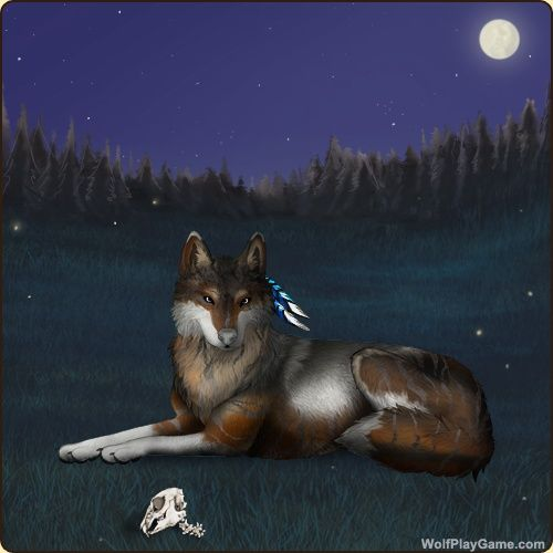 Wolf Play Fun Wolf Game Wolf Breeding Game Wolf Games Breeding Games Roleplay Wolf