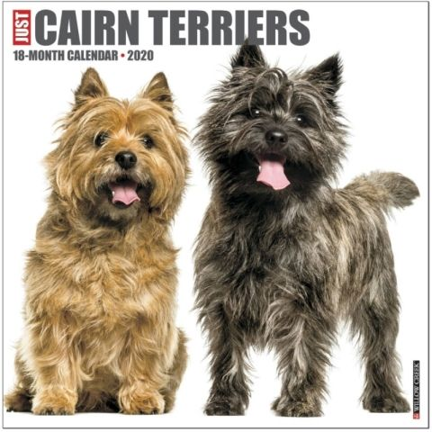 Just Cairn Terriers 2020 Calendar In The Classic Film The Wizard
