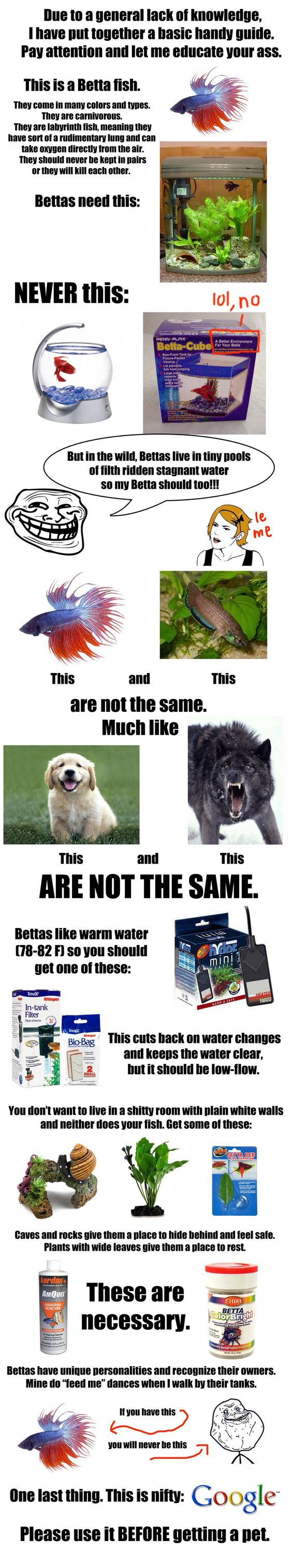 Reddit: due to an overwhelming lack of knowledge that makes me rage, I have put together a handy guide. - Imgur