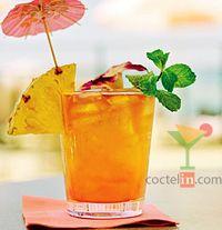 Mai Tai frutal - Recetas de Tragos, Tragos con Ron, Tragos Frutales, Vaso de Trago Largo, and Vaso de Whisky