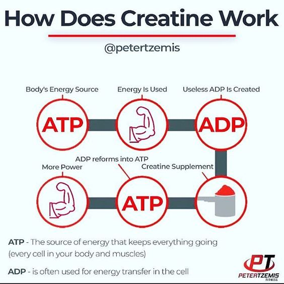 How Does Creatine Work by @petertzemis - Creatine can increase muscle strength help you work harder for longer in the gym and give you a bigger muscle pump. Its also very safe so theres no reason not to add this effective supplement to your stack. Creatine is a combination of three different amino acids: glycine arginine and methionine. That's itnothing more than a combination of amino acids. Creatine is not a steroid it is totally different and works in a different manner. Creatine is also prod
