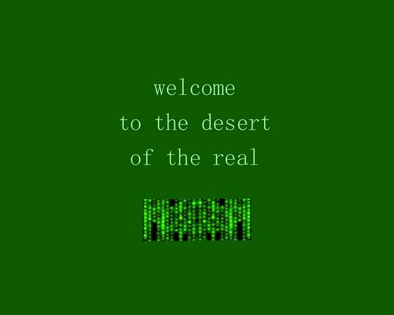 Welcome To The Real World Quotes: Welcome To The Desert Of The Real