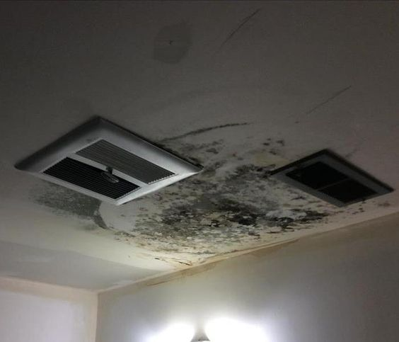 Black Mold on Ceiling of Residence. SERVPRO offer mold remediation! Call us today if you notice mold in your home or business!