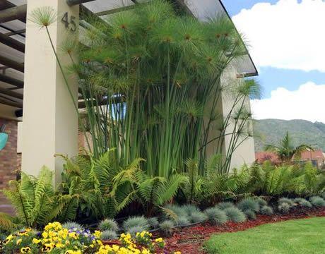 Dise os y proyectos de jardiner a buscar con google dise os pinterest plantas y jard n - Disenos de jardineria ...