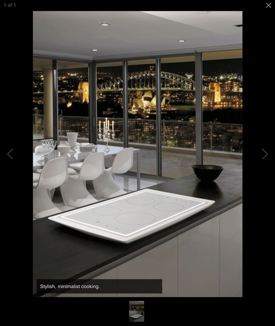 Induction professional cooktop best