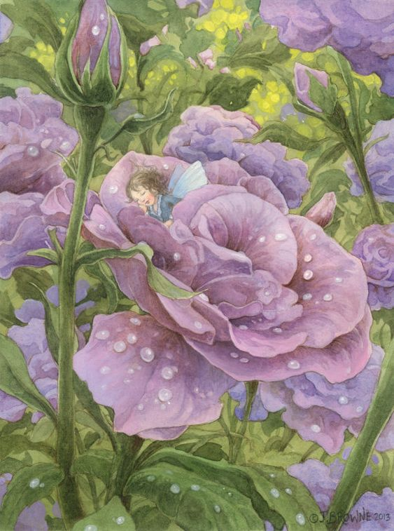 Overnight Sleeping Flower Fairy ~ James Browne: