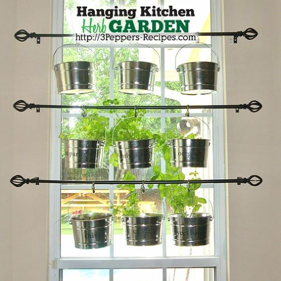 Image result for growing herbs on a curtain rod
