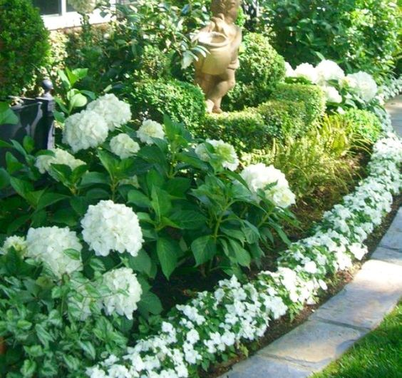 Hydrangeas, hostas, impatience, lambs ear.: