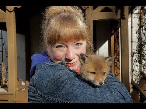 Wie Schlau Ist Der Fuchs Doku Reportage Fur Kinder Paula