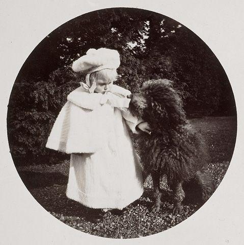 Prince Edward of York (later King Edward VIII) with Sammy the poodle, at Sandringham in November 1896. Sammy met a tragic end at Osborne after accidentally eating rat poison.
