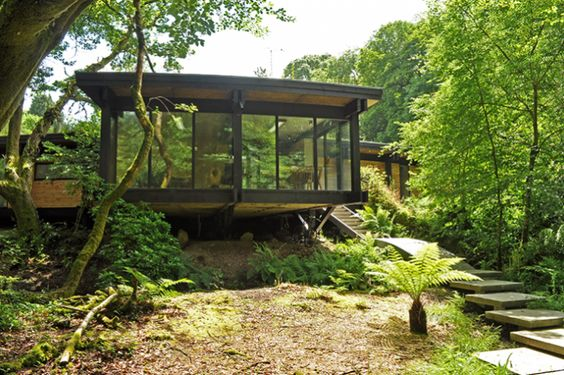 Woodland eco house on a budget