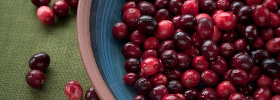 Beauty Is Wellness: Anti-Aging Cranberries for your Thanksgiving Table + Antioxidant Cranberry Apple Sauce (Cranberries image ©Pen Waggener) | Recipe by @Jolene Hart | Organic Spa Magazine