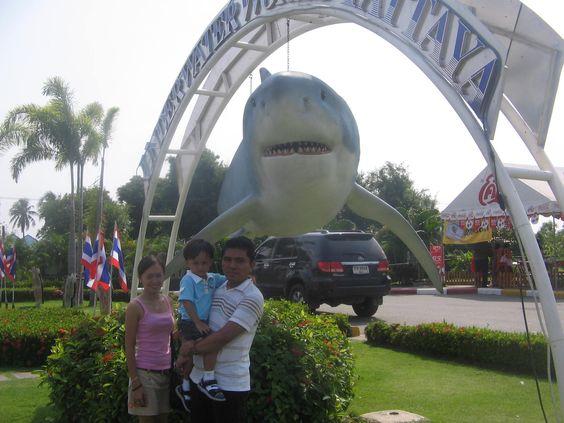 sharky...