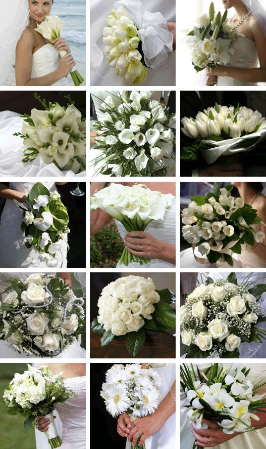 Romantic Flowers: White Flowers