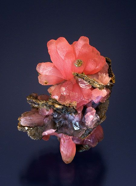 "Looks like a beautiful flower...  earthshaped:    Rhodochrosite ""blossom""     Wolf Mine, Betzdorf, Siegerland, Germany"