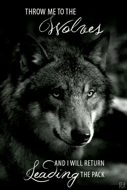 Throw me to the Wolves…….The Witch Said What? – Witches Of ...