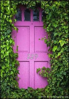 porta abraçada pelo verde