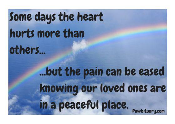Rainbow Bridge, Pet Loss, Grief, Peace