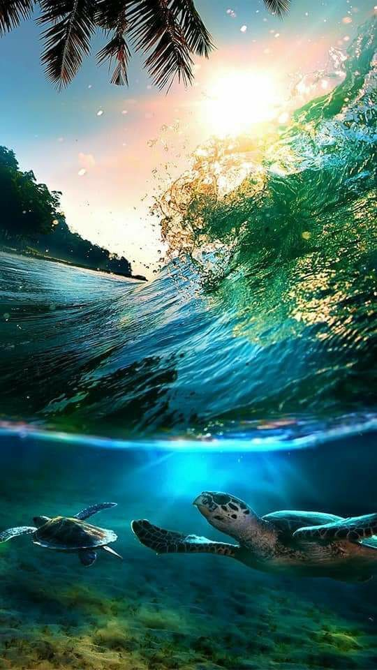 Landscape Nature Sea Ocean Motivational Fabric Poster 21 X13 Ocean Wallpaper Summer Screensavers Beach Pictures