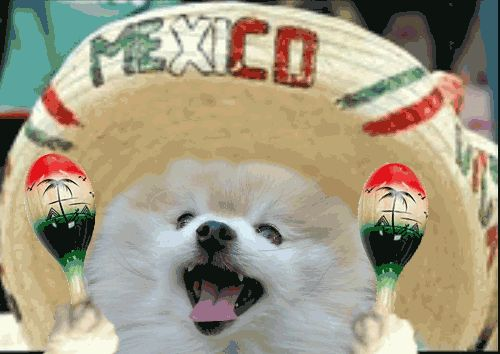 Happy Cinco De Mayo from ProHealth Staffing!