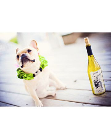 Gidget, a French bulldog, was featured on the wine bottle labels for this L.A. wedding.
