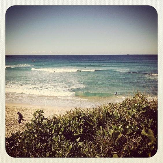 pendant la balade de la plage de Bronte à Bondi #Australie #Sydney #BronteBeach #BondiBeach #Bronte #Bondi #plage #balade