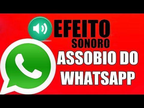 Baixar Toque Do Whatsapp Assobio Baixe O Som Toque De