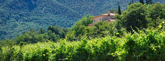 Château Grand Boise. #sun #seasnowsun #tourisme #tourism #france #pacatourism #pacatourisme #PACA #provencal #tourismpaca #tourismepaca #vin #wine #oenotourisme #vitivinicole #vigne #raisins #grapes #vineyards #cave #chateau #grand #boise