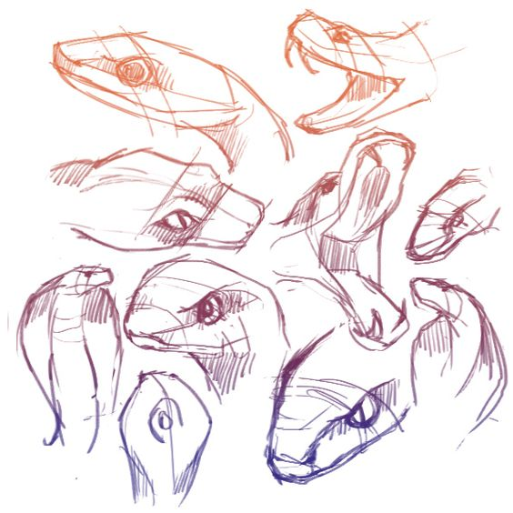 Snake Head Sketch Sketch And Snake Head Snake Pinterest Sketches And Snakes