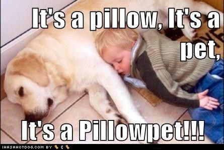 this is the kind of pillow pet i'd want