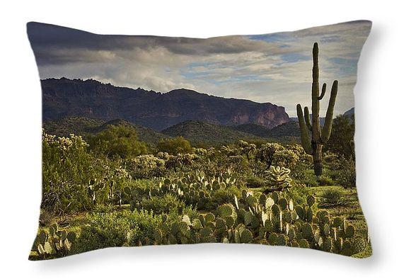 "The Desert is Wearing a Carpet of Green  Throw Pillow 20"" x 14"" © Saija Lehtonen Photography saija-lehtonen.artistwebsites.com"