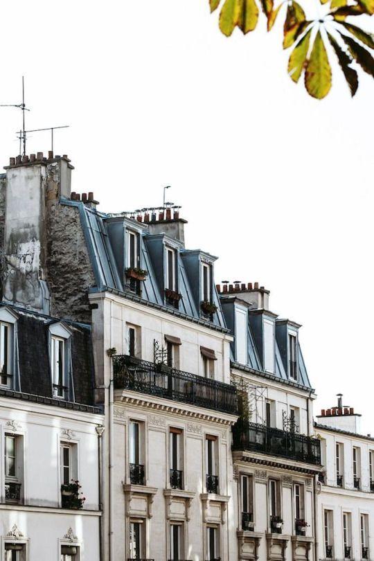 Paris buildings pinterest rooftops building and for Architecture parisienne