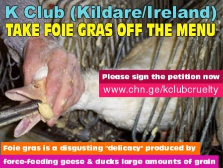 Sign the petition now -- http://www.change.org/petitions/k-club-take-foie-gras-off-the-menu