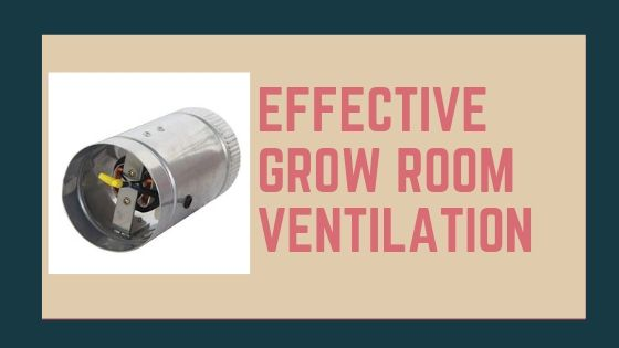 Your Guide To Effective Grow Room Ventilation Grow Room Ventilation Grow Room Room Ventilation Led Grow Lights