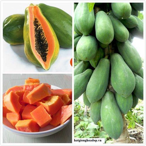 Trong đu đủ lượng beta-carotene nhiều hơn trong các rau quả khác