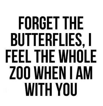 Forget the butterflies, I feel the whole zoo when i am with you #quotes #words