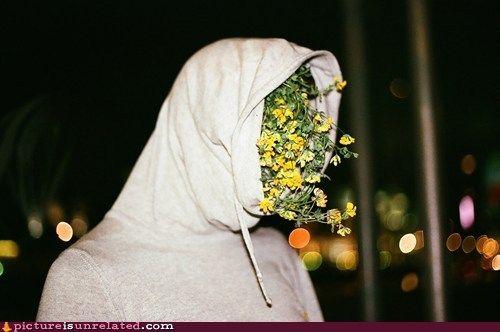 wtf photos videos - Flower Head