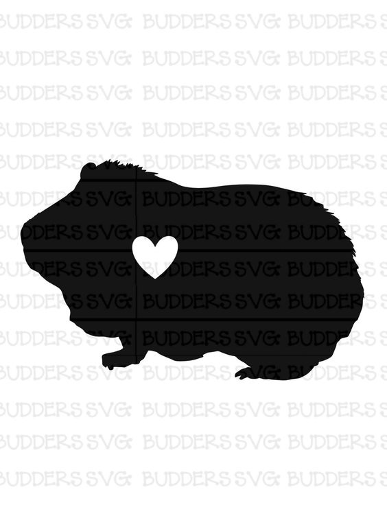 46+ Guinea pig clipart free information