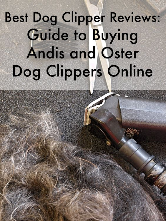 Best Dog Clipper Reviews: Guide to Buying Andis and Oster Dog Clippers Online