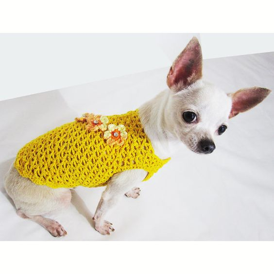 Yellow crystal flower dog clothes luxury chihuahua fashion - Dog clothes for chihuahuas ...