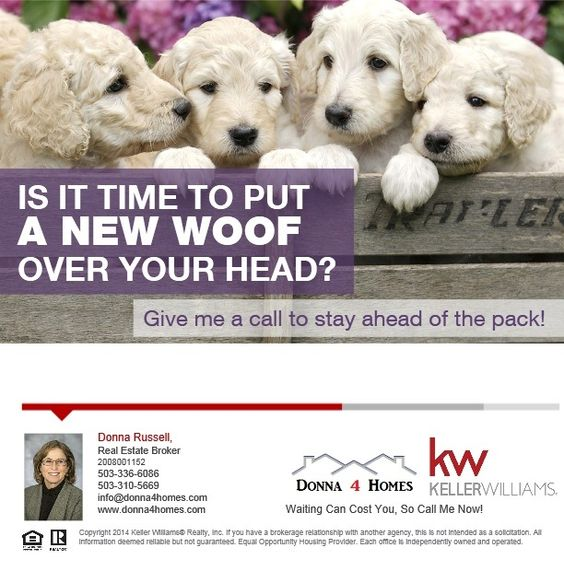 Time 4 A New Woof? Check Out Homes Currently For Sale.  Set Up Your Own Listing Alert Criteria and Receive The Results In Your Email Box As Often As You'd Like.