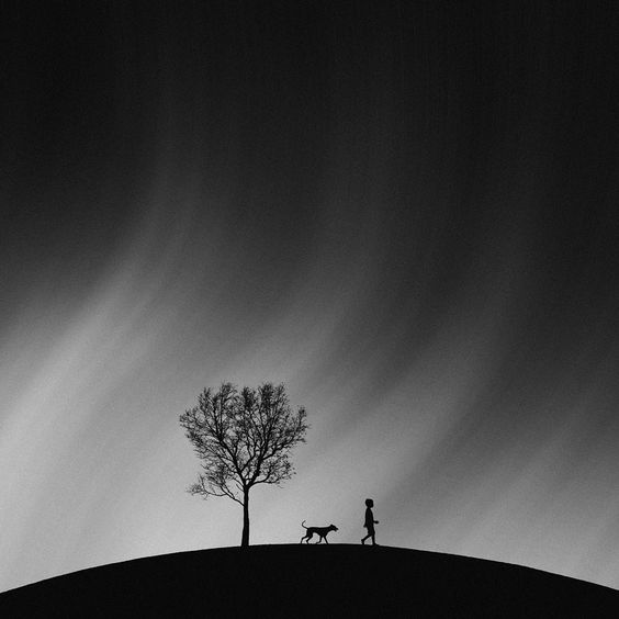 A Tale Of Harmony by Hengki Lee on 500px