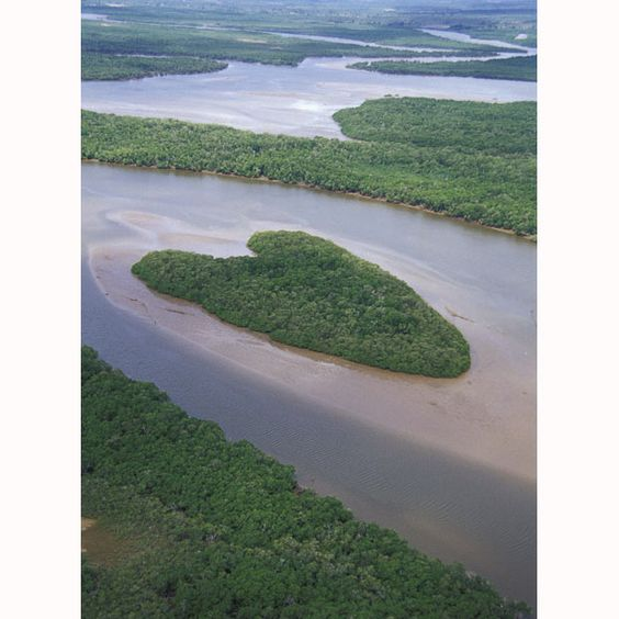 Heart-shaped island in the mangrove delta of the Vaza-Barris River in Brazil