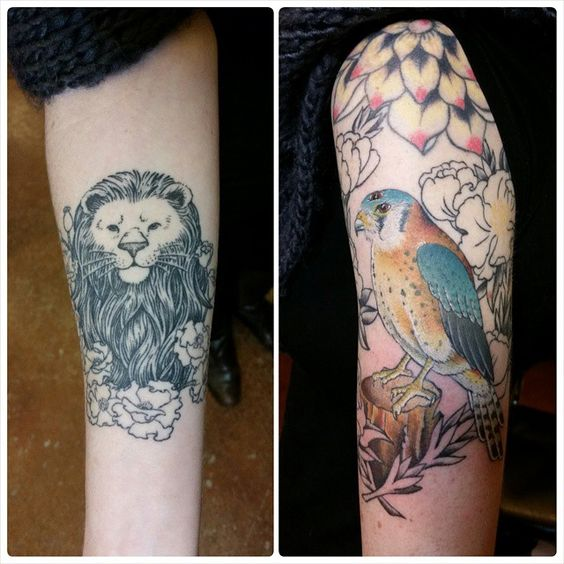 Making progress on Julie's kestrel and got a healed picture of her lion head. Thank you,  #TrueLoveTattoo #DanielHerlihy #BerkeleyArt #FineArt #OaklandArt #Artwork #Berkeley #SanPabloLove #GoodTattoosForGoodPeople #Kestrel #Poppies #lion #OZ #BerkeleyTattoos #OaklandTattoos #BirdTattoos #PutaBirdonit