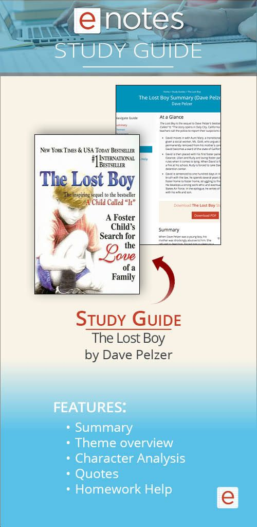 Check Out Our New Summary And Study Guide For The Lost Boy By Dave Pelzer On Enote Com Critical Essay Help Chrysanthemum