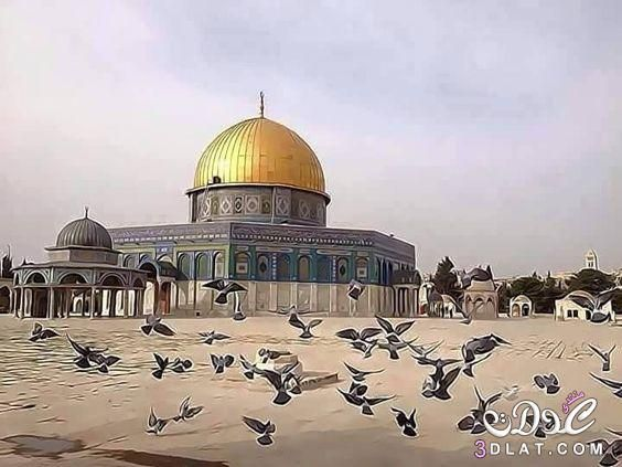 صور القدس الجريحة 2020 صور المسجد الاقصي رمزيات عن القدس خلفيات عن المسجد الاقص Dome Of The Rock Medina Mosque Palestine Art